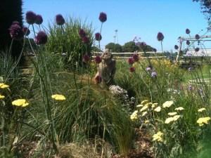 The countryside garden border