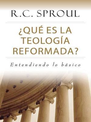 Qué es la teología reformada