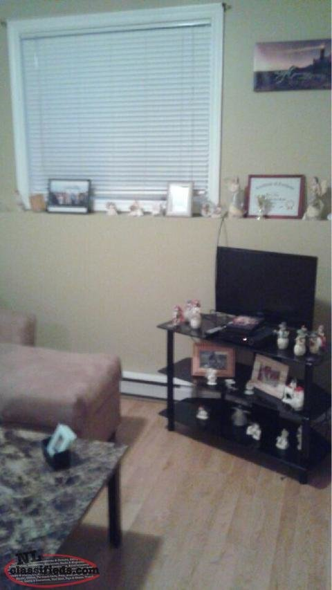 Best 1 Bedroom Basement Apartment For Rent Trepassey With Pictures