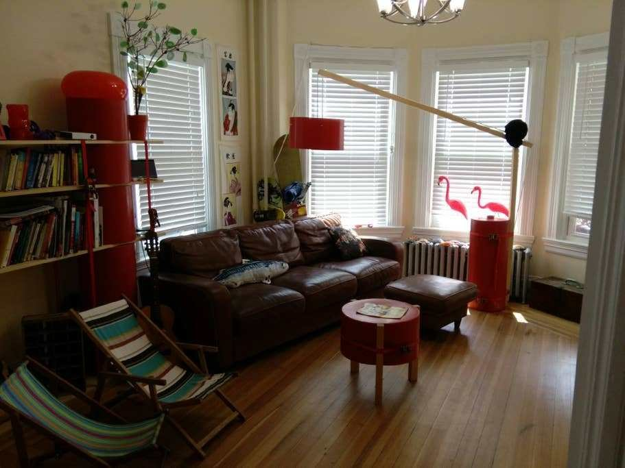 Best Gorgeous 3 Bedroom Apartment Parking College Area With Pictures
