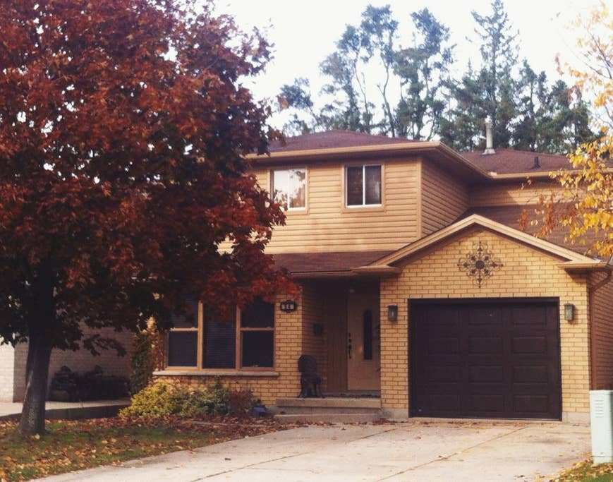 Best Lovely Hamilton Home Houses For Rent In Hamilton With Pictures