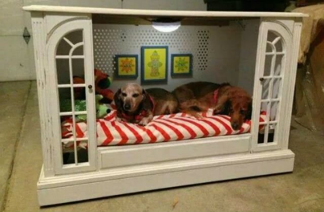 Best 14 Innovative Diy Home Makeovers To Satisfy Your Inner Dog With Pictures