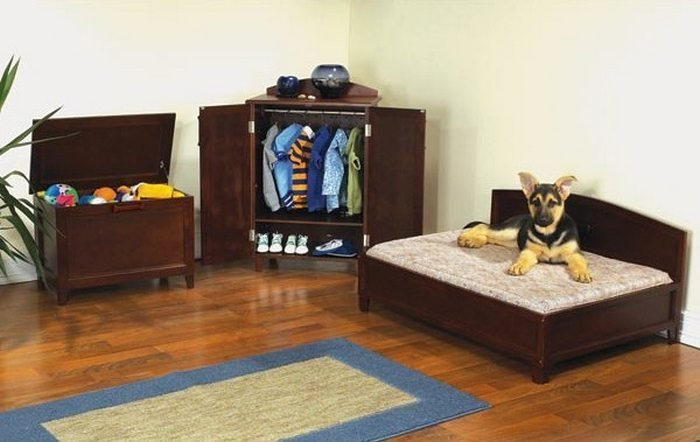 Best Turn A Small Closet Into A Dog Bedroom Diy Projects For With Pictures
