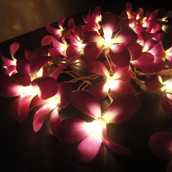 Best 35 Purple Frangipani String Lights Flower Fairy Lights Bedroom With Pictures