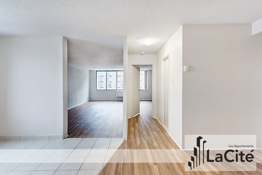Best 1 Bedroom Apartment For Rent Downtown Montreal For Rent Apartments In Montreal Quebec Canada With Pictures