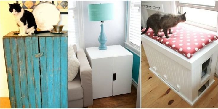 Best 25 Hidden Litter Boxes Ideas On Pinterest Diy With Pictures
