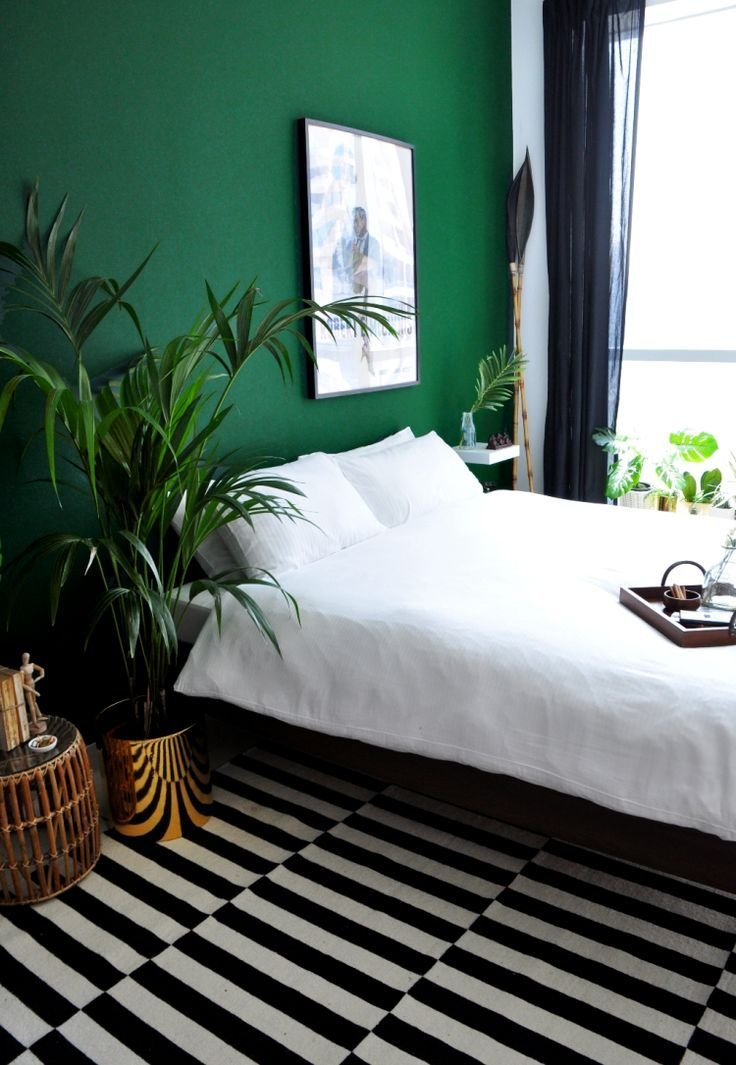 Best 25 Green Bedrooms Ideas On Pinterest Green Bedroom With Pictures