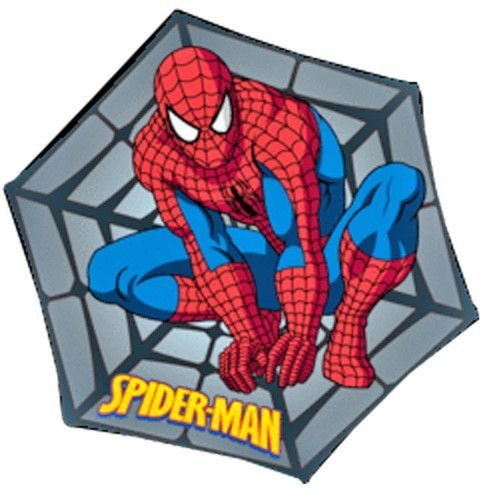 Best Spiderman Rug For The Kid S Room Superheroes Of The With Pictures