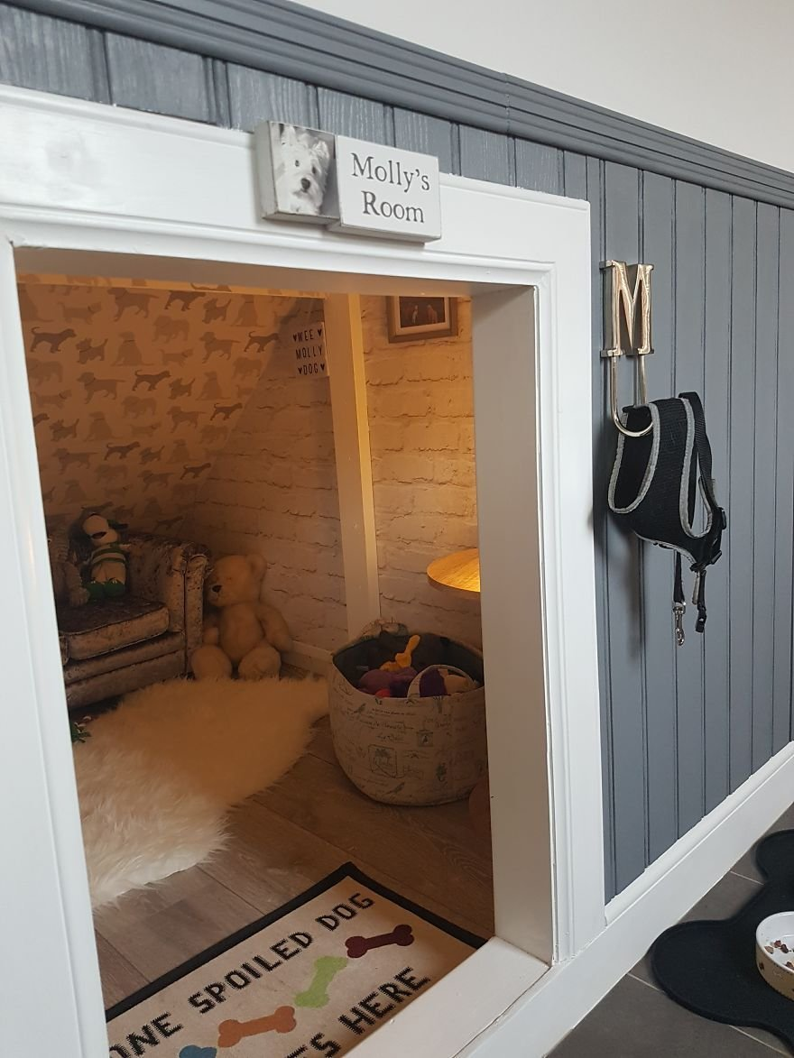 Best Our Dog Was Getting A Human Sister So I Built Her A Room With Pictures