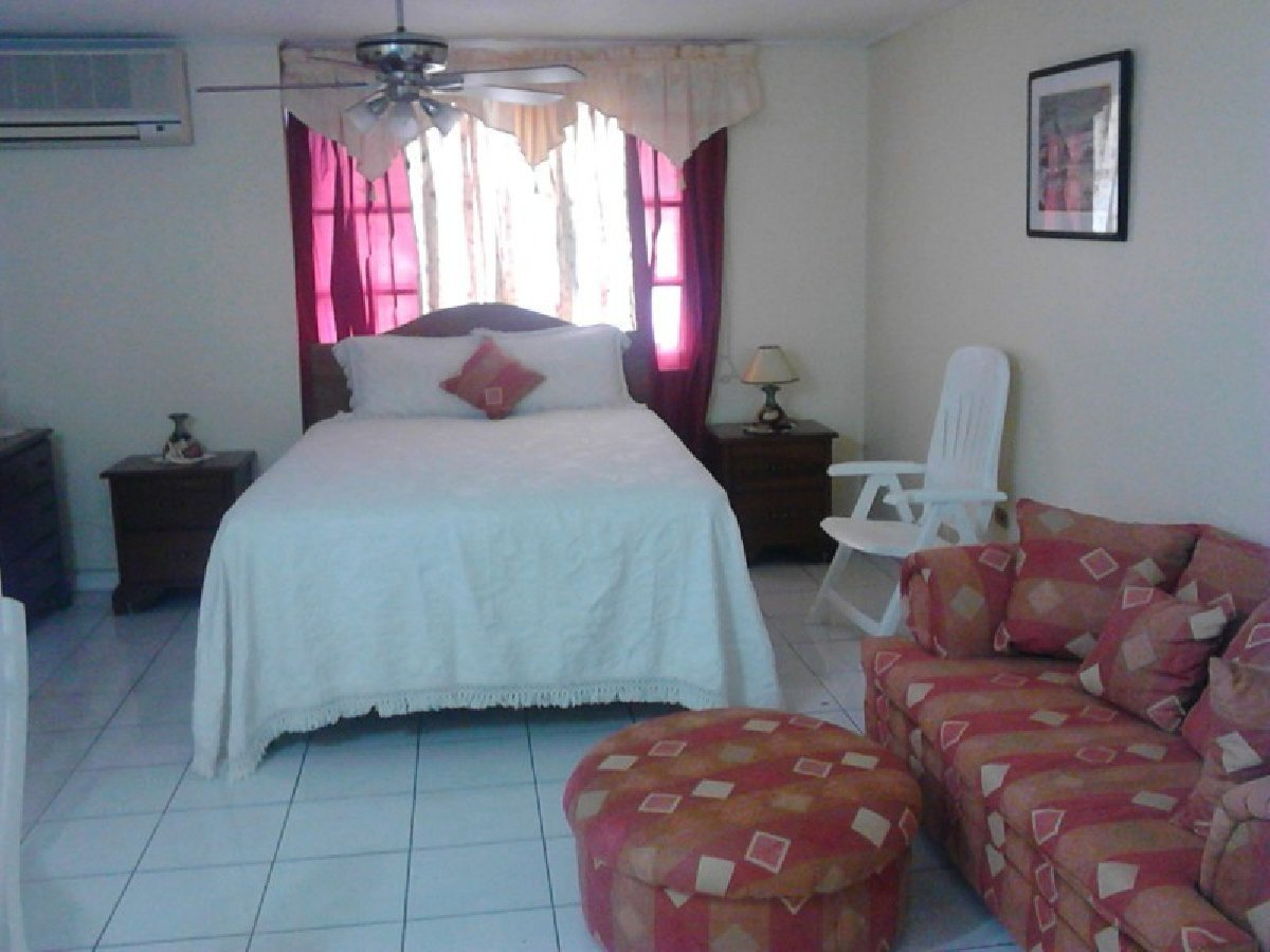 Best 1 Bedroom Apt In Kingston On Www Indiepedia Org With Pictures