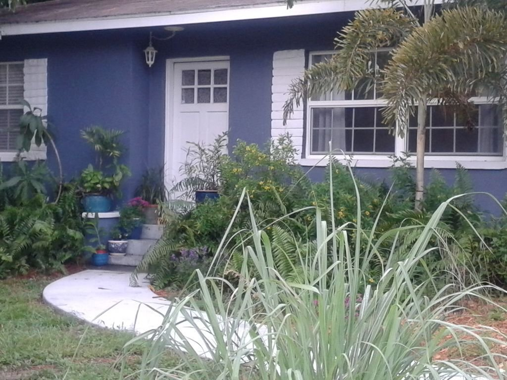 Best Blueberry House One Mile From Dunedin Includes Honeymoon Island Park Pass Clearwater With Pictures