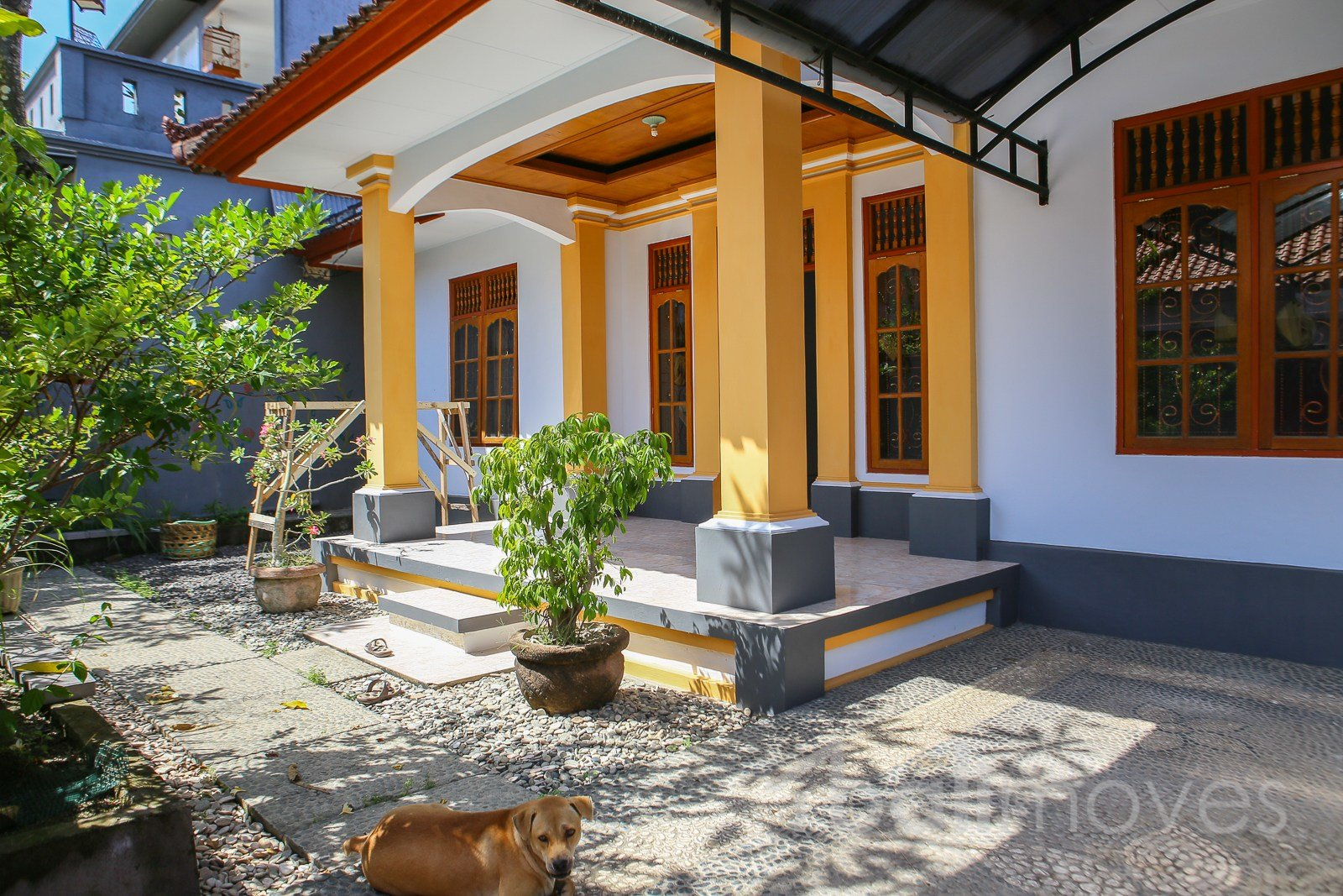 Best Bright House In Two Beds For Rent ⋆ Sanur S Local Agent ⋆ Balimoves Property With Pictures