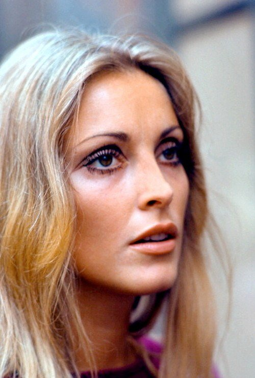 Best Sharon Tate Gone But Never Forgotten Iheartingrid With Pictures