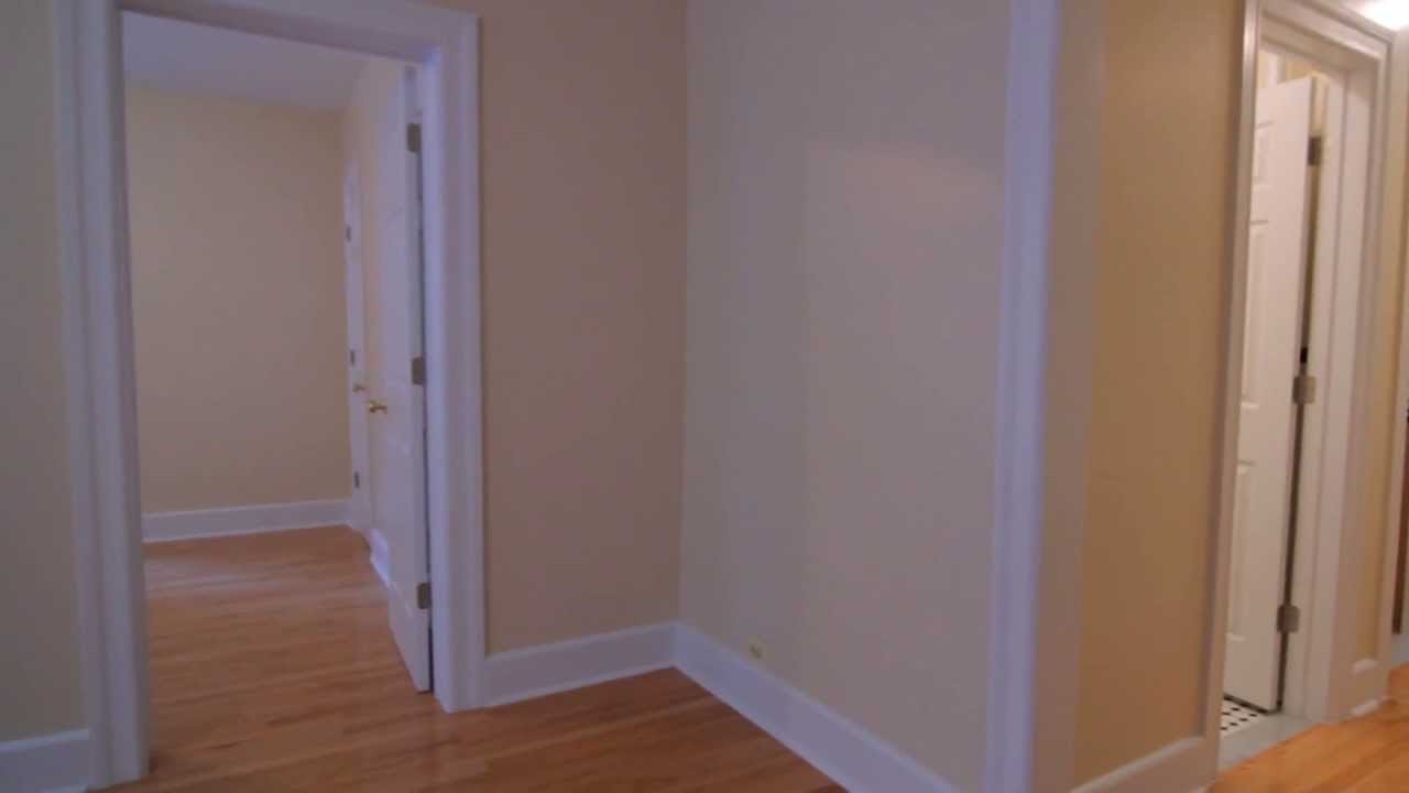 Best Massive Renovated 1 Bedroom Apartment East Tremont With Pictures
