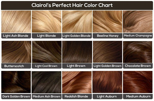 Free Light Brown Hair The Ultimate Light Brown Colors Guide Wallpaper