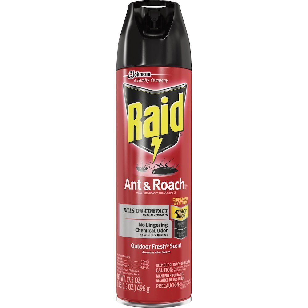 Best Raid Ant Roach Killer Spray Spray Kills Ants With Pictures