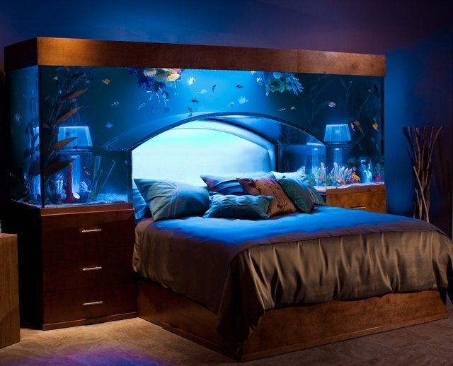 Best Custom Aquarium Headboard Because You Just Can T Get With Pictures