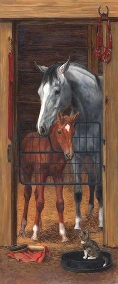 Best 1000 Images About Horse Room On Pinterest Horse Rooms With Pictures
