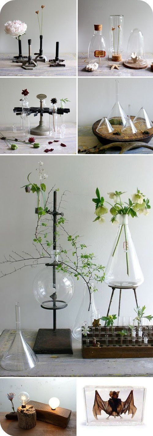 Best 25 Best Ideas About Science Room On Pinterest Science With Pictures