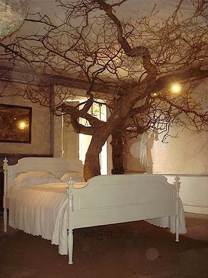 Best Fairytale Bedroom Bedroom Ideas For The Girls With Pictures