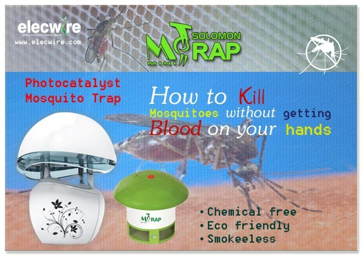 Best How To K*Ll Mosquitoes Without Getting Blood On Your Hands With Pictures
