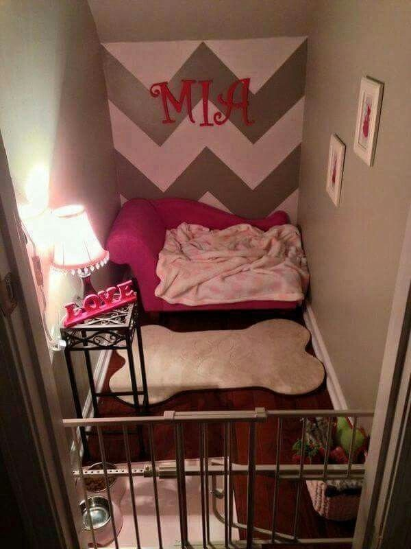 Best 25 Cute Dog Beds Ideas On Pinterest Dog Beds Cool With Pictures