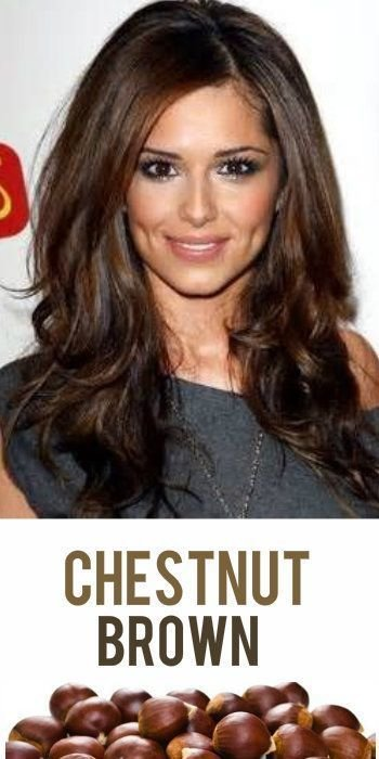 Free 1000 Ideas About Chestnut Hair Colors On Pinterest Wallpaper