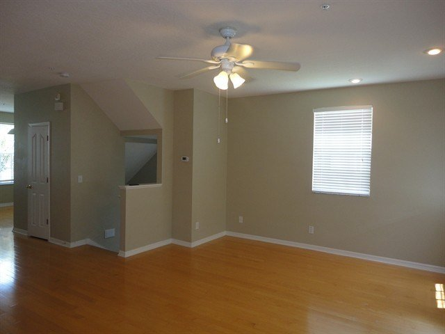 Best 2946 Bayshore Pointe Dr Tampa Fl 33611 3 Bedroom With Pictures