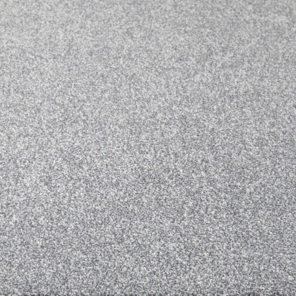 Best Gray Carpet Masimes With Pictures