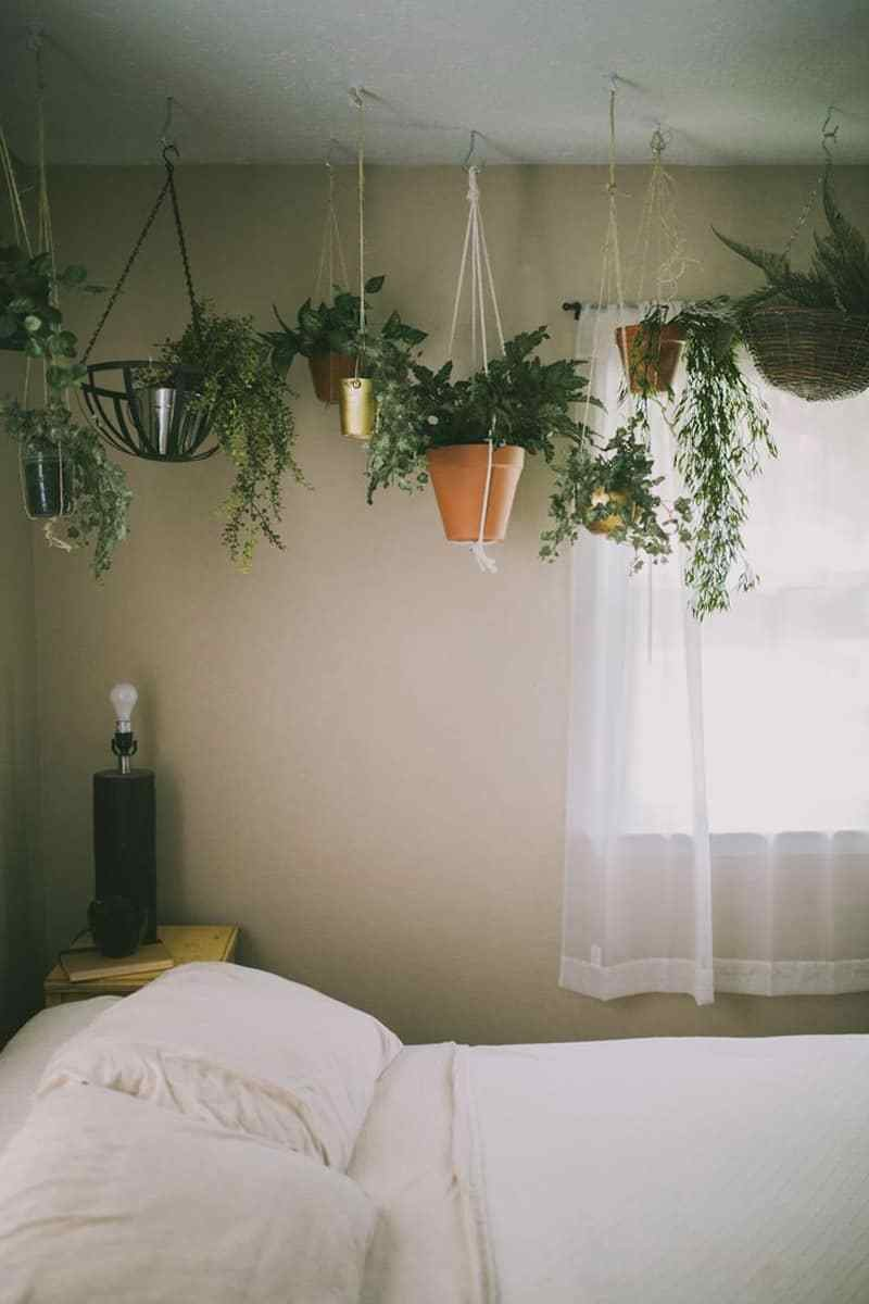 Best Macrame Plant Hanger Patterns To Embellish Any Rustic Or With Pictures