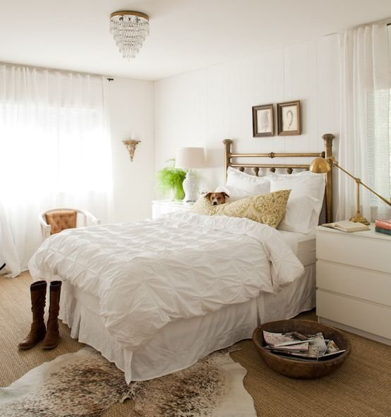 Best Cowhide Rugs And A Few Ways Of Using Them In Your Interior With Pictures