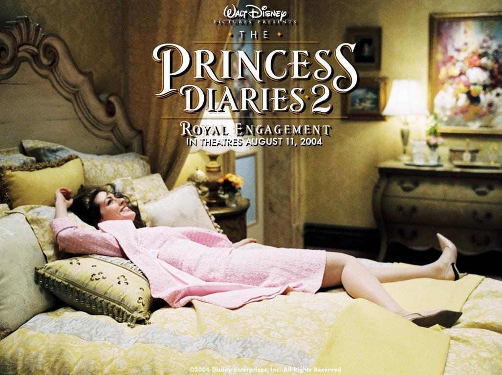 Best Princess Diaries Wallpaper The Princess Diaries Photo With Pictures