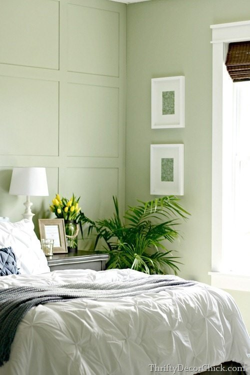 Best 15 Best Green Paint Colors To Spruce Up Your Walls — The With Pictures