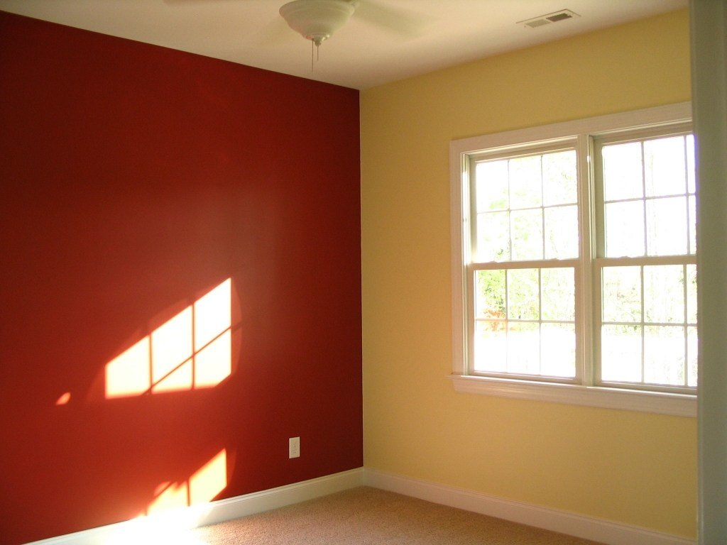 Best Wall Paint Different Color Video And Photos With Pictures
