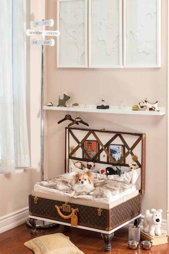 Best Pets At Home Designing Dog Rooms – Pawsh Magazine With Pictures