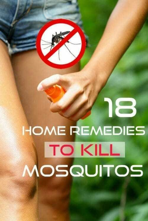 Best 18 Proven Home Remedies To Get Rid Of Mosquitoes With Pictures