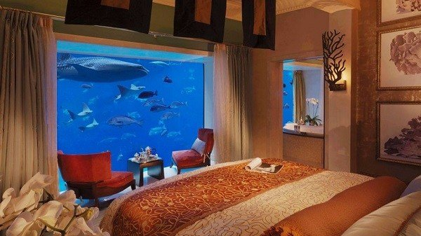 Best Substantial Home Decor With Bedroom Aquariums With Pictures