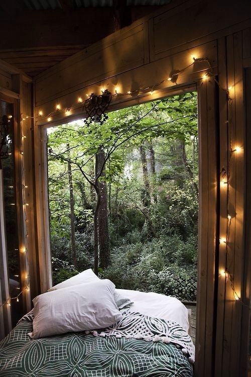 Best Room In Nature Pictures Photos And Images For Facebook With Pictures