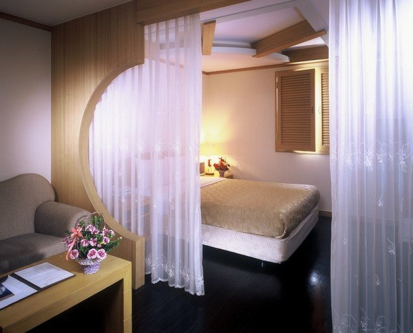 Best Room Divider Curtain For Your Bedroom Privacy And Home With Pictures