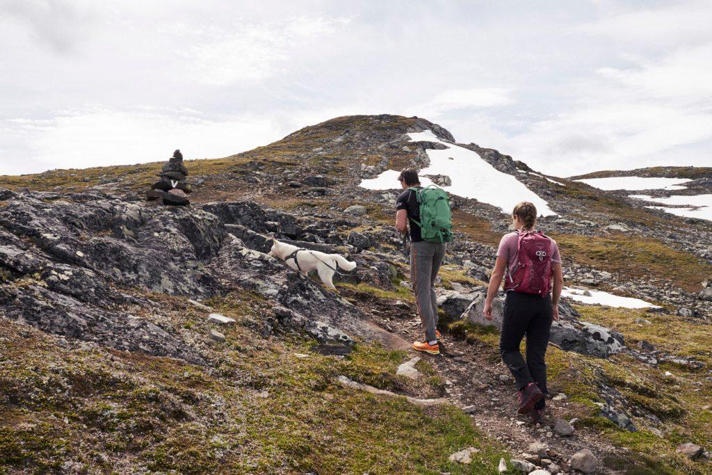 2019.06-Jotunheimen-Utsikten – Petter Olsen MoN (38)