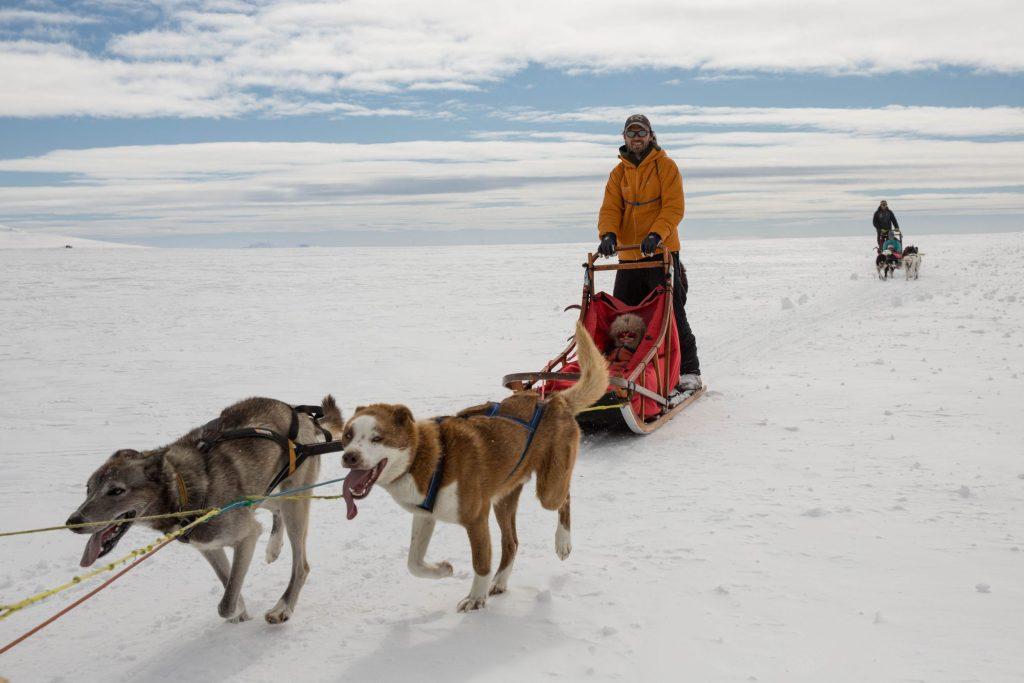 Snowhere Dogsledding – Jotunheimen Travel © Kjell Erik Reinhardtsen