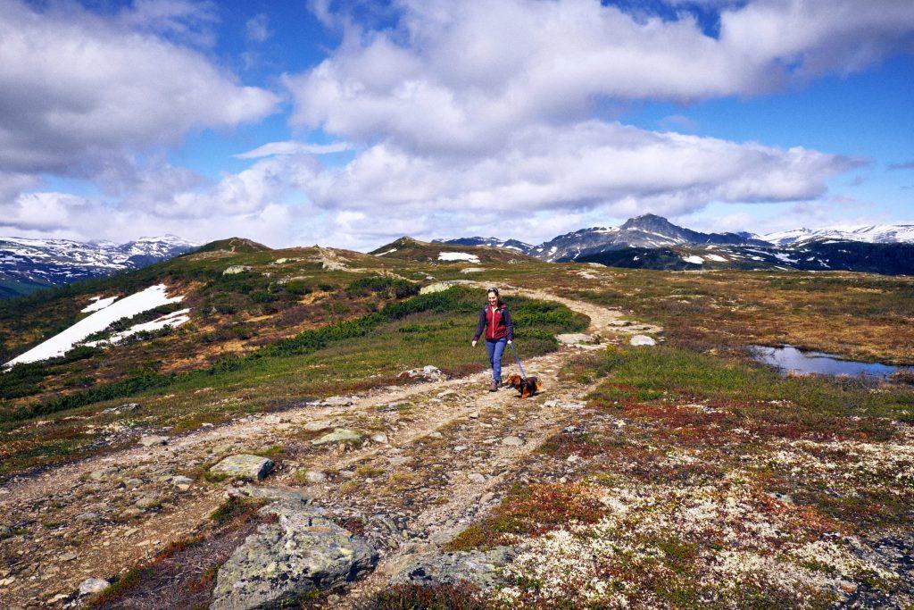 Knausehøgdi – Mountains of Noway (3)