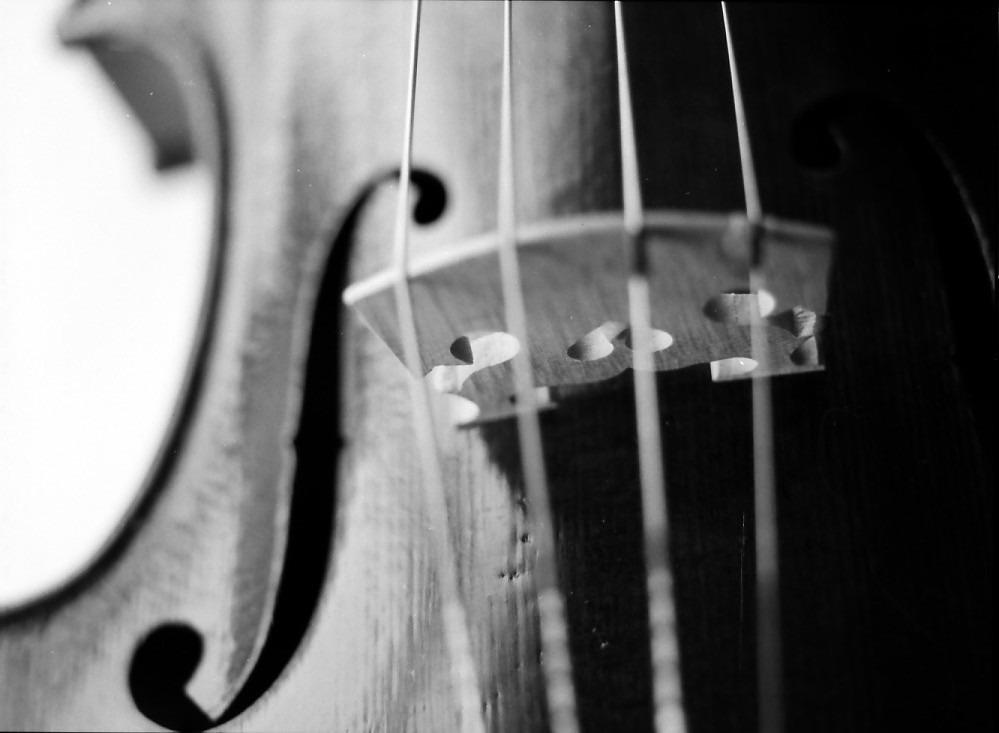 apprendre violon adulte
