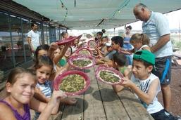 חוות דרך התבלינים-בית לחם הגלילית