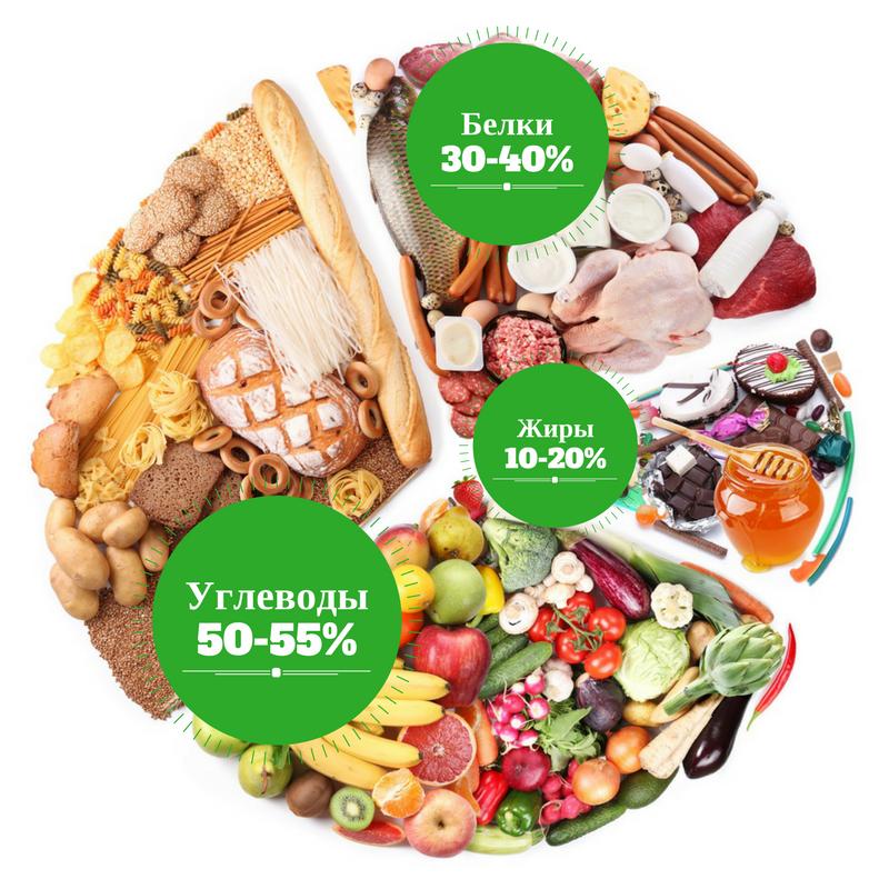 баланс белков жиров и углеводов