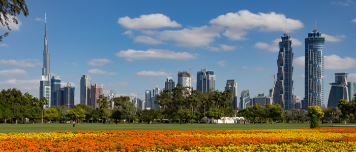 Free Things to Do in Dubai - Picnic at a Park in Dubai.