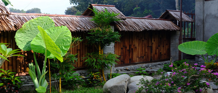 bukit lawang hut