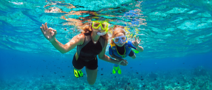 things to do in Ubud and Nusa Dua - Snorkel