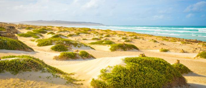 year round destination cape verde islands