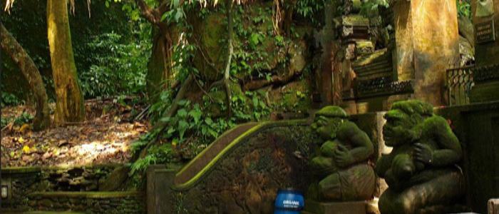 places to visit in ubud- ubud monkey forest